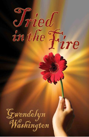 Tried in the Fire (Kindle)
